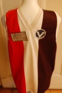 VAFA Saints Colours Jumper