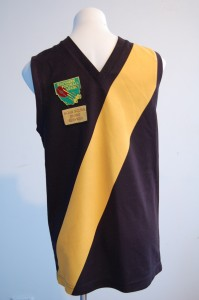 Tasmania's own colours Football Jumper