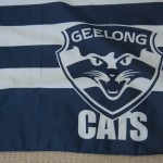 geelong flag